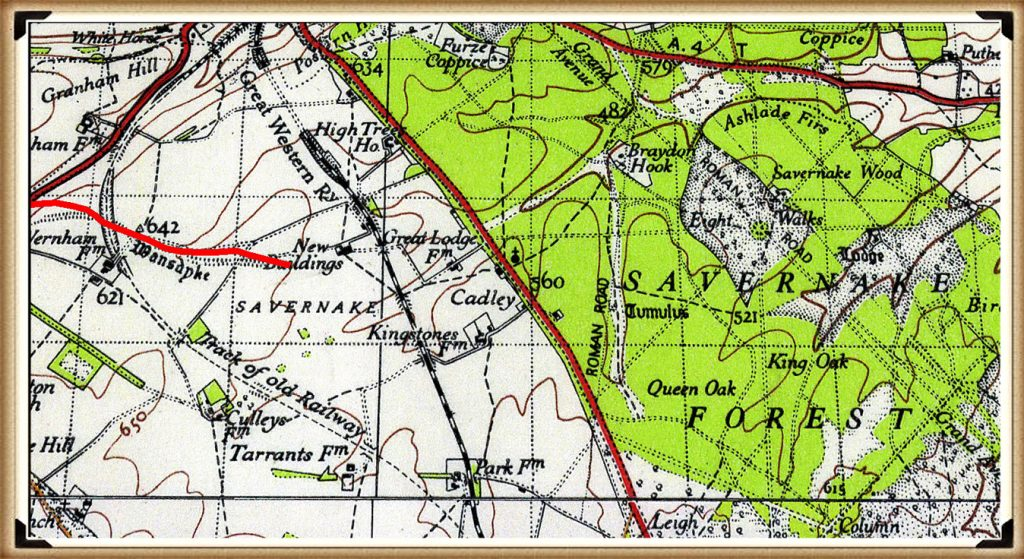 Savernake Forest - Prehistoric canals (dykes)